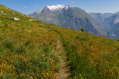 French Alpes Stock Photo