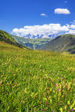 French Alps in summer Stock Images