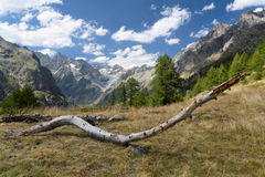 French Alps Valley Stock Photo