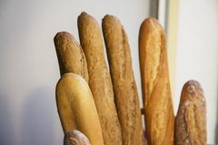French baguette  bread Royalty Free Stock Images