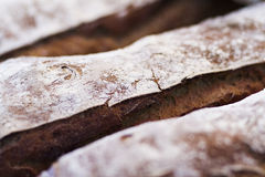 French baguettes closeup. Loaves of french baguettes showing the tops close up Stock Image
