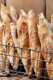 French Baguettes In Metal Basket In Bakery Stock Images
