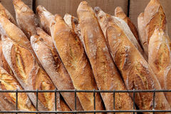 French baguettes in metal basket in bakery Royalty Free Stock Images