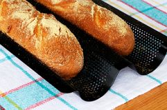 French baguettes in tray. Royalty Free Stock Photos