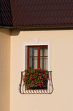 French balcony. Close-up of french balcony with window-box full of flowers Royalty Free Stock Images