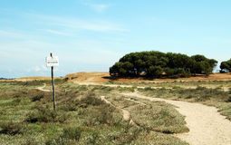 French beach path near the sea shore. With vegetation and trees Royalty Free Stock Image