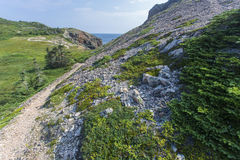 French Beach trail, Twillingate Island Royalty Free Stock Photo