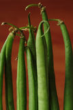 French beans Stock Images