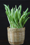 French Beans. On the dark background Royalty Free Stock Images