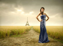 French beauty Stock Photography