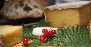 French bread, cheeses, and currants Royalty Free Stock Photography