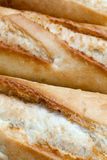 French bread Stock Photography