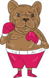 French Bulldog Boxer Boxing Stance Cartoon Royalty Free Stock Photography