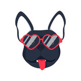 French bulldog dog head dog face illustration .Beautiful french bulldog puppy black fawn dog looks out the glasses. Dog in glasses adorable picture Royalty Free Stock Photo