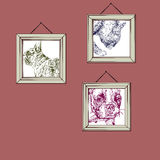 French Bulldog. Hanging picture of French Bulldog and cats portraits Stock Images