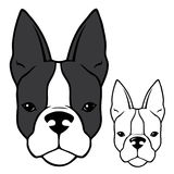 French bulldog head. Vector illustration of french bulldog head Vector Illustration