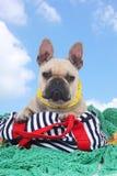 French bulldog on holidays on fisherman net Royalty Free Stock Photography