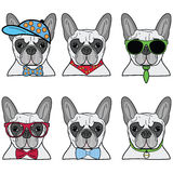French bulldog icons Stock Photo