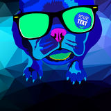 French Bulldog. illustration for a card or poster. Print on clothes. Cute puppy. Pedigree dog. Stock Images