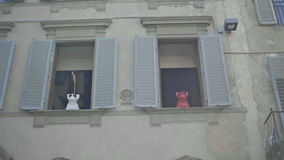 French bulldog iphone speakers in Florence windows stock footage