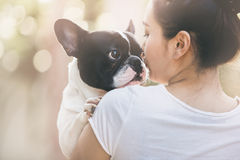 French bulldog kiss girl. French bulldog is cute kissing girl. She carry on a dog Royalty Free Stock Photos