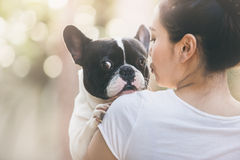 French bulldog kiss girl. French bulldog is cute kissing girl. She carry on a dog Royalty Free Stock Image