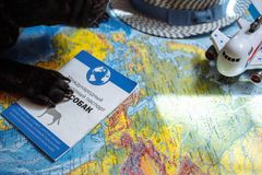 French bulldog lies on the world map with passport, hat and small plane, close up paws, travel with dog, where to go with dog. French bulldog is thinking of Far royalty free stock photography