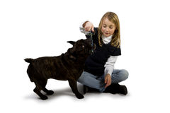 French bulldog and little girl playing Royalty Free Stock Photos