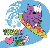 French bulldog loves surf Stock Photo