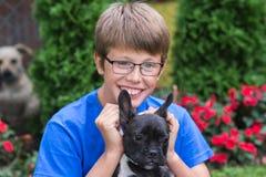 French bulldog puppy with boy Stock Photos