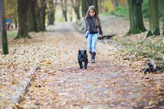 Little girl walking with her dog stock images