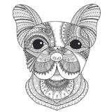 French bulldog puppy zentangle stylized for coloring book for adult, tattoo, T-shirt design and other decorations Royalty Free Stock Photos