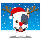 French Bulldog Reindeer Royalty Free Stock Images