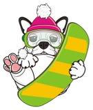 French bulldog riding on the snowboard Royalty Free Stock Photos