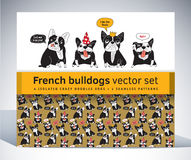French bulldog set pack characters pattern and objects. Royalty Free Stock Image