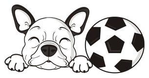 French bulldog sleeping  with ball Stock Photos