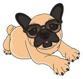 French bulldog in sunglasses lying Royalty Free Stock Photos