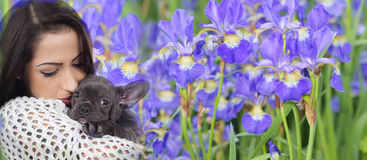 French bulldog with woman Stock Photos