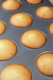 French cakes, Madeleines Royalty Free Stock Image