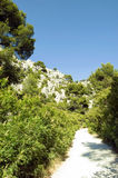 The French Calanques. Footpath through the French Calanques Stock Photography