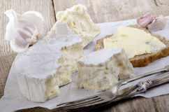 French camembert on white paper Stock Photography