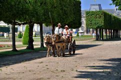 French carriage Stock Photography