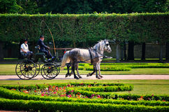 French carriage Stock Photos