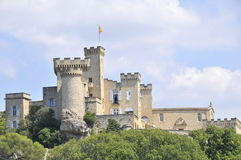 French castle Royalty Free Stock Photo
