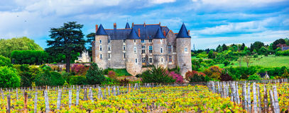 French castles and vineyards,Luynes castle, heritage of France Royalty Free Stock Photos