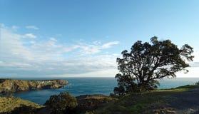 French catalonia coast Royalty Free Stock Image