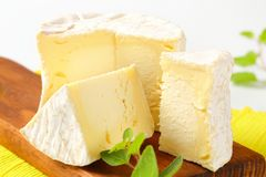 French Chaource cheese Stock Photography