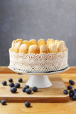 French charlotte cake with blueberries Stock Images