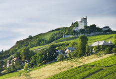 Free French Chateau And Vineyards Stock Photo - 6044320
