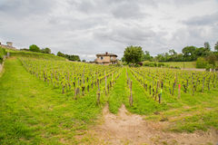 French Chateau in Saint-Emilion. View of a French Chateau with vineyards in Saint Emilion in the Bordeaux region stock photography